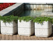 SQUARE CONCRETE PLANTER