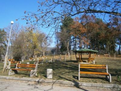 Пейки и кошчета в парк
